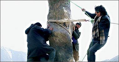 Мужчины за работой (Kargaran mashghoole karand)