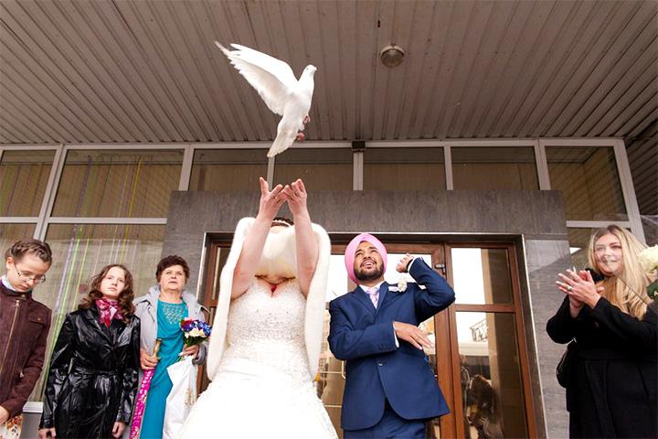 Единственный, кто остался доволен своим изображением на этой фотографии, — это, судя по всему, белый голубь