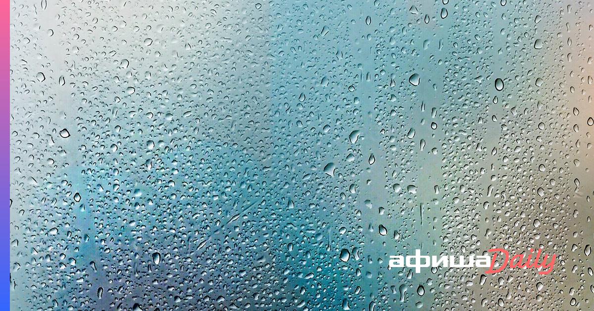 Увлажнители воздуха для квартиры: для чего нужны, как выбрать и какие они бывают?