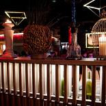 Ресторан Дикий - фотография 5 - Интерьер