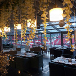 Ресторан Palladium - фотография 3 - Прекрасный вид на арену