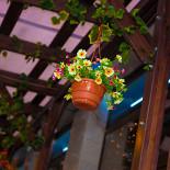 Ресторан Bierhof - фотография 3