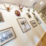 Ресторан Андерсон на Обручева - фотография 2