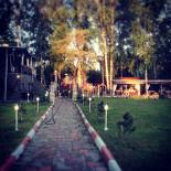 Ресторан Лесной - фотография 2