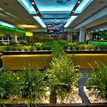 Ресторан Съел бы сам - фотография 3 - Изумительный эко-интрерьер в СъелБыСам