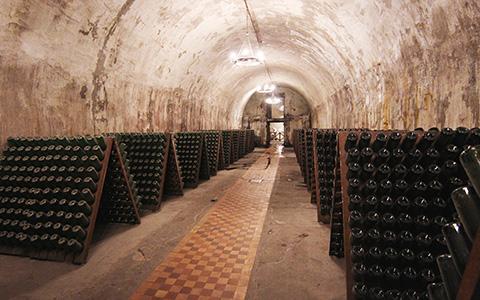 Как водка и пиво мешают премьеру Медведеву напоить нас приличным вином