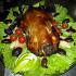 Ресторан Нар-Шараб - фотография 5 - Утка фаршированная яблоки ,черносливы и апельсины.