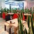 Ресторан Kill Bill - фотография 19