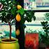 Ресторан Лимон & Mята - фотография 1