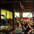 Ресторан Лебединое озеро - фотография 26