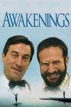 Пробуждение / Awakenings