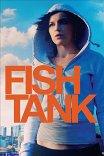Аквариум / Fish Tank