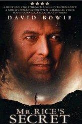 Постер Тайна мистера Райса