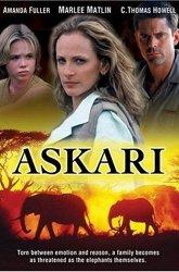 Постер Аскари