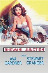 Постер Станция Бховани