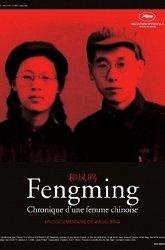 Постер Воспоминания Фенмин