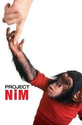 Постер Проект «Ним»
