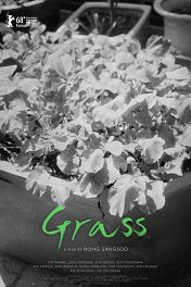 Листья травы / Grass