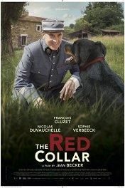 Красный ошейник / Le collier rouge