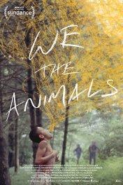 Мы, животные / We the Animals