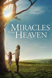 Чудеса с небес / Miracles from Heaven