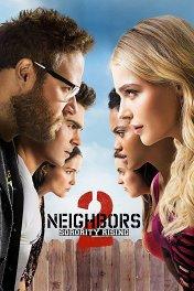 Соседи: На тропе войны-2 / Neighbors 2: Sorority Rising