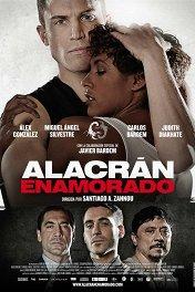 Влюбленный скорпион / Alacrán enamorado