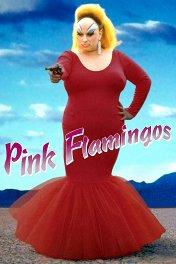 Розовые фламинго / Pink Flamingos