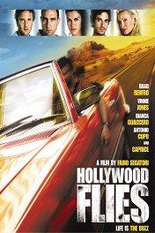 Налетчики из Голливуда / Hollywood Flies