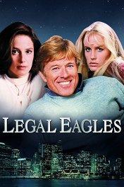 Орлы юриспруденции / Legal Eagles