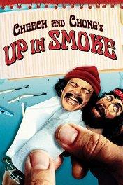Чич и Чонг навеселе / Up in Smoke