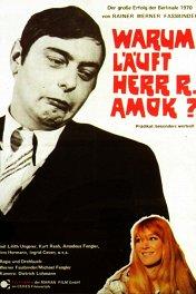 Почему рехнулся господин Р.? / Warum läuft Herr R. Amok