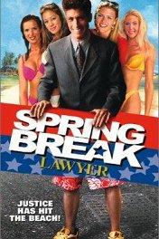 Адвокат на каникулах / Spring Break Lawyer