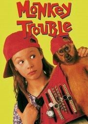 Постер Неприятности с обезьянкой