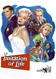 Постер Имитация жизни