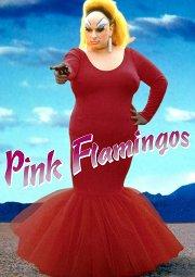 Постер Розовые фламинго