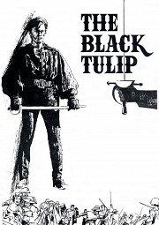 Постер Черный тюльпан