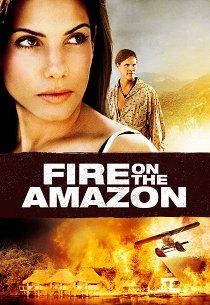 Амазонка в огне