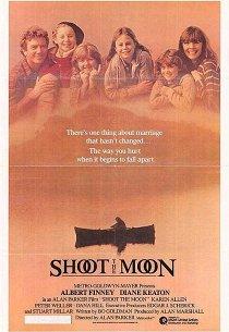Пристрели луну