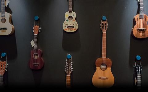 Кто, как и кому продает в Москве гитары, вертушки, укулеле и примочки