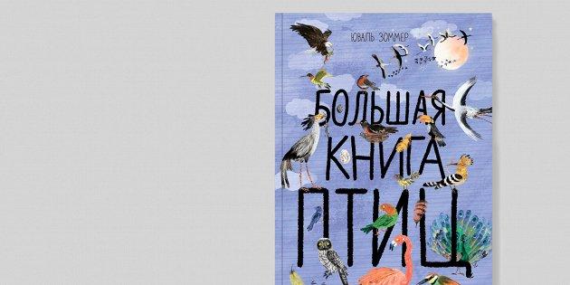 Чиж или зяблик: 10 увлекательных книг про птиц для детей