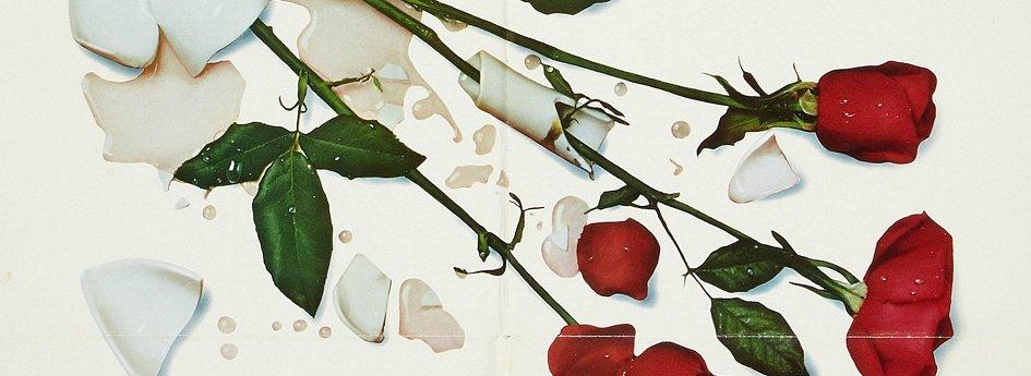 Кино: «Все из-за роз»