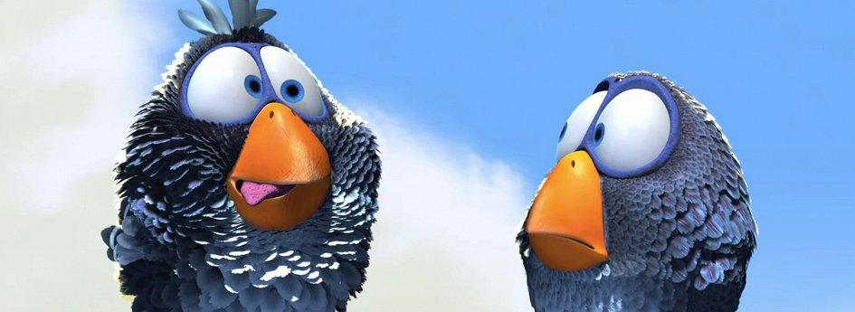 Кино: «О птичках»