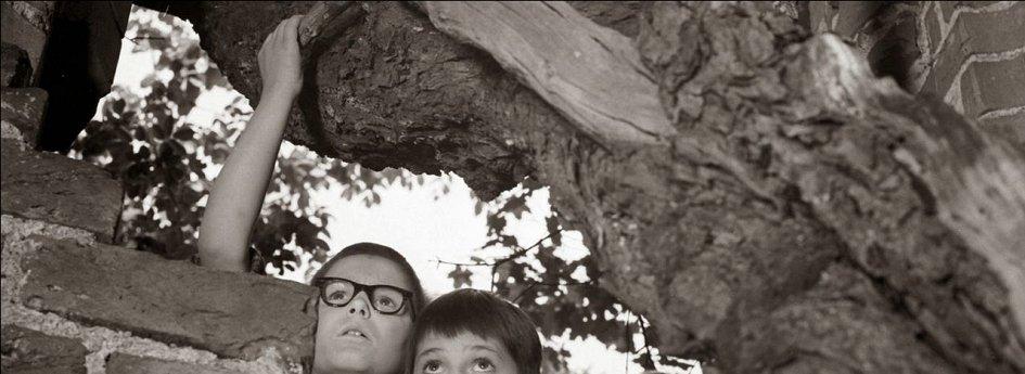 Кино: «Клад на дне озера»