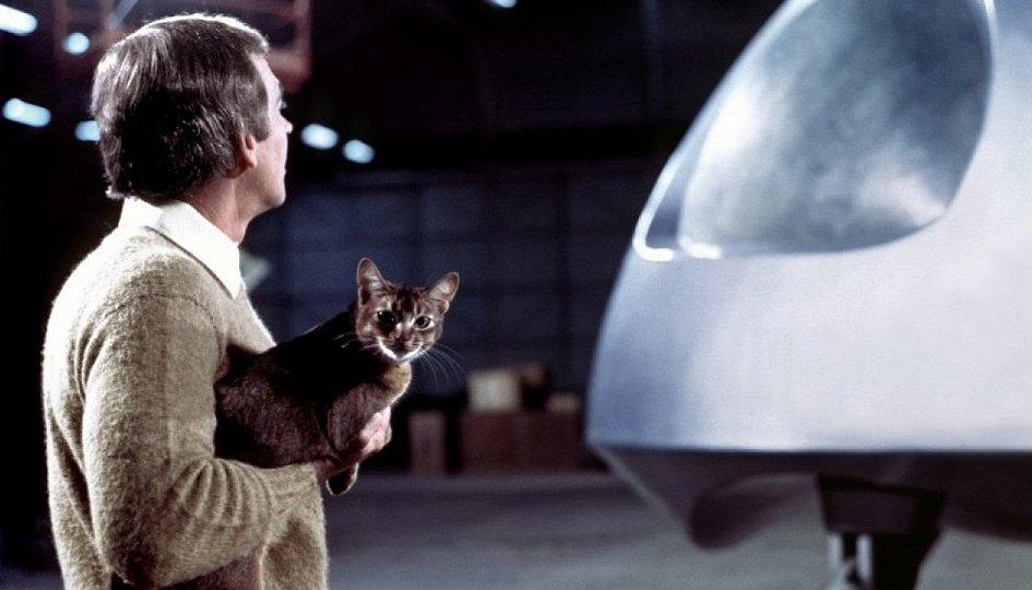 Кино: «Кот из космоса»
