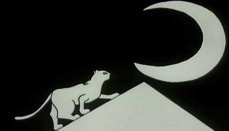 Кино: «История о кошке и луне»