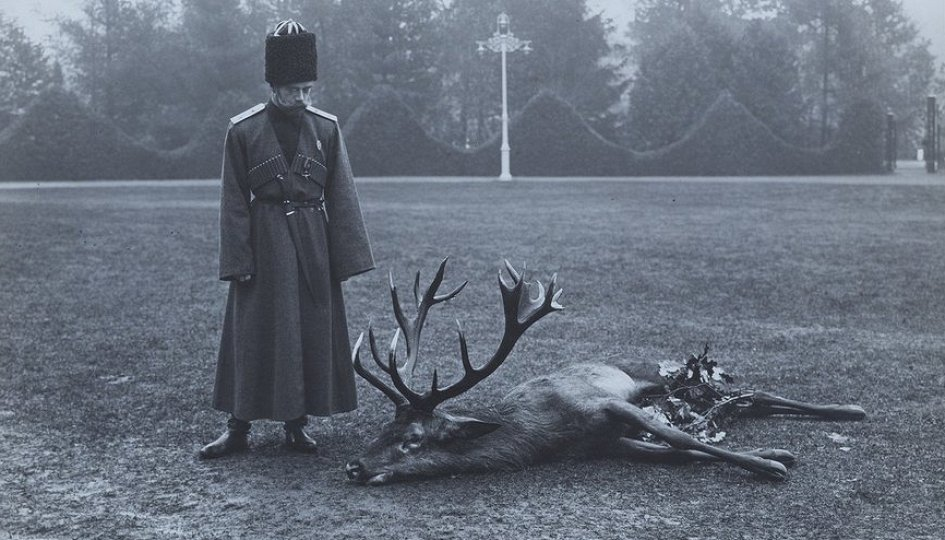 Выставки: Николай II. Семья и престол
