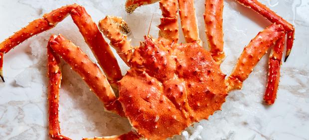 fitcher: Сезонное обновление меню в Wine & Crab, устричный сет по средам в The Y и другие новости