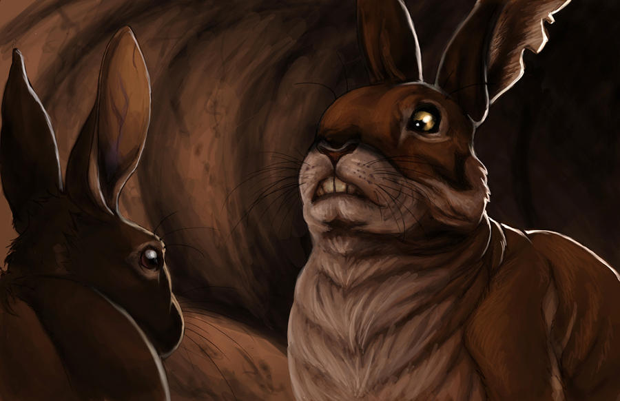 Watership down chapter summary