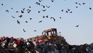 Рекультивацию мусорных полигонов переложат наихвладельцев